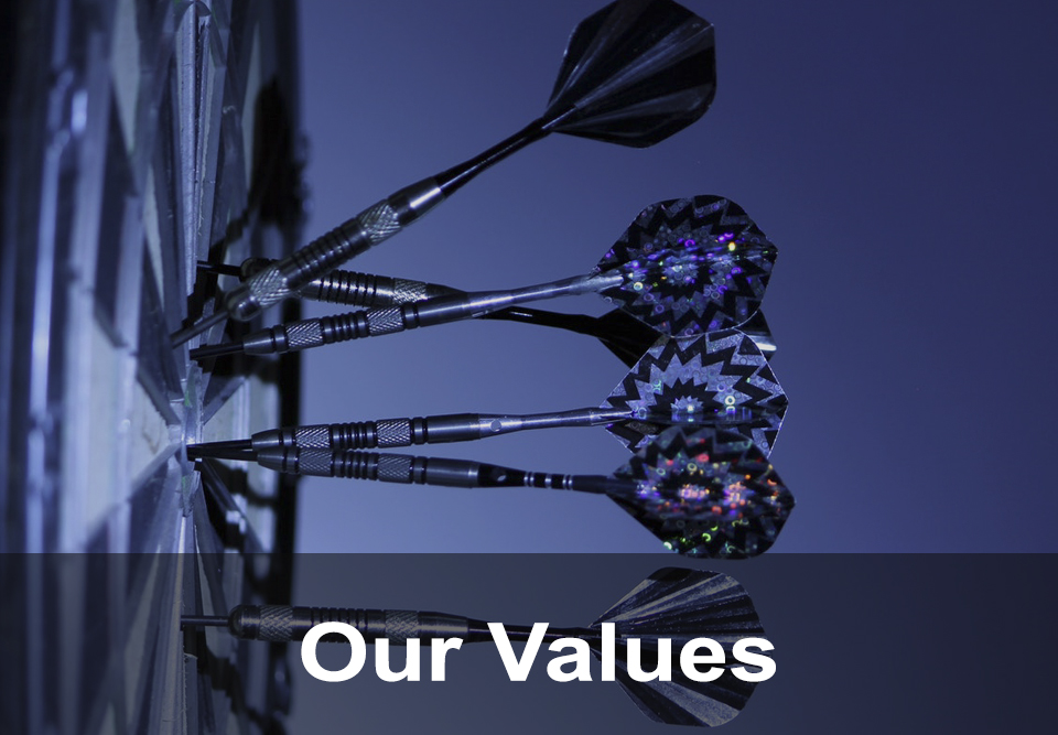 cidid-our-values